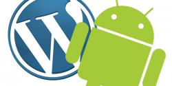 android版wordpress发布管理